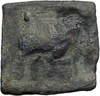 APOLLODOTOS II 110BC Indo Greek Kingdom INDIA Bull Tripod Ancient Coin i47804