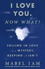 I Love You. Now What? : Falling in Love Is a Mystery, Keeping It Isn't by Mabel