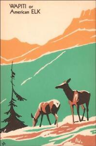 ELK or WAPITI, wood block print, 1st edition, Philip Martin, vintage print 1938*