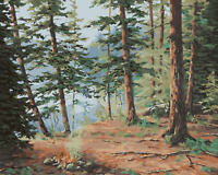 """DIY Hill forest Vintage Paint By Number 16x20"""" Acrylic Painting On Canva 2075"""