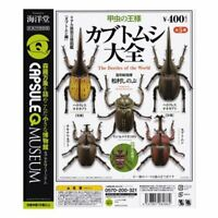 KAIYODO Capsule Q Museum Beetle Taizen All 5 types set Full Comp figure #1217