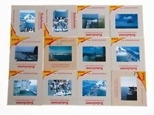 12 Amateur 35mm Slides, Photos, Military Men BBQ shirtless & Sunbath on Ship