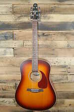 Seagull Entourage Rustic Dreadnought Acoustic Guitar  DAMAGED   #D5372