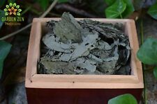 Salvia Divinorum - Diviner's Sage Leaf ☆Organic☆ 1 Oz Whole Leaves