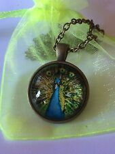 Peacock Nature Bird Glass Cabochon Dome Pendant Necklace. Hand Made High Quality