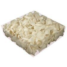 Echte konservierte Rosenblätter - Streukörbchen Hochzeit Tischdeko - weiß