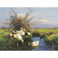 Koester Seven Ducks Ditch Birds Nature Painting Large Canvas Art Print