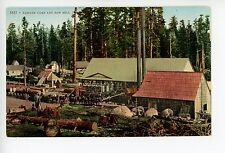 Oregon Lumber Camp & Saw Mill—Antique Logging Industry Equipment 1910