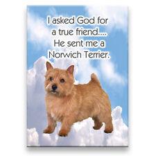 NORWICH TERRIER True Friend From God FRIDGE MAGNET No 1