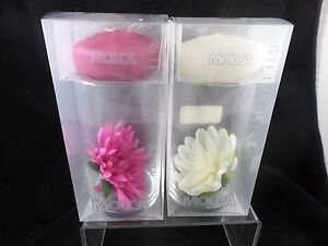 Molca Designs Floating Candle with Glass Cylinder and Flower Set Pink White NEW