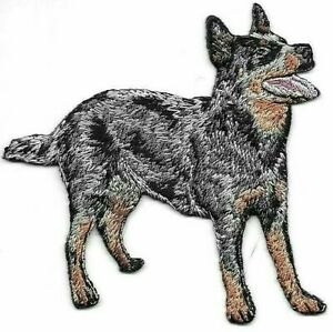 """3 1/8"""" x 3 1/4"""" Black Australian Cattle Dog Breed Embroidery Patch"""
