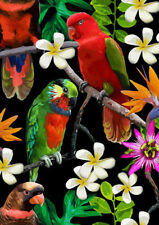FRANGIPANIS AND BIRDS * LARGE A3 SIZE QUALITY CANVAS ART PRINT