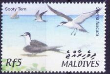 Sooty Tern, Onychoprion fuscatus, Birds, Maldives 2002 MNH - D114