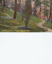 A Winding Path In Madrona Park Seattle WA     Postcard 41613