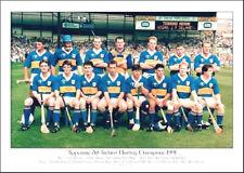 Tipperary All-Ireland Senior Hurling Champions 1991: GAA Print