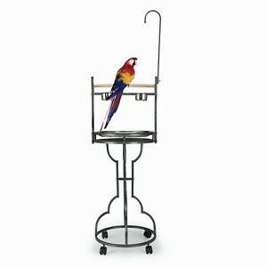 """72"""" Bird Play Stand Large Parrot Play Gym Ground Rolling Stand Wood w/Tray Bowls"""