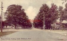 MEARS AVENUE LOOKING NORTH, WHITEHALL, MI. handcolored 1907