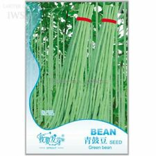Green Soy Beans Cowpeas Vegetable Seeds 25 Seeds Natural Organic Vegetables Yard