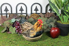 Furry Animal Feather Brown Hen with Nest Chicken Taxidermy Figurine Decor M
