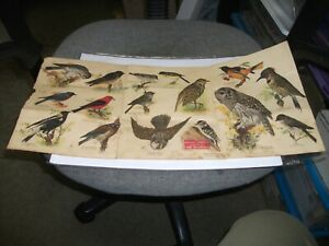 1916  MASSEY HARRIS BROCHURE-THE FARMER'S FRIENDS-BIRDS (MEGA RARE)