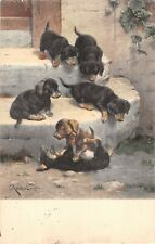 Adorable Dachshund Puppies Playing on 1910 Postcard-Artist-Signed C. Reichert