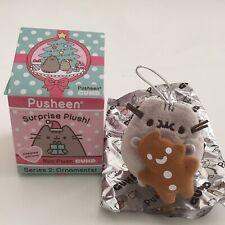 RARE Pusheen Series 2 Surprise Box Plush Collectible Gund Gingerbread Chase
