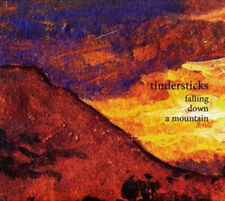 Tindersticks - Falling Down a Mountain (CD 2010) NEW AND SEALED  DIGIPAK