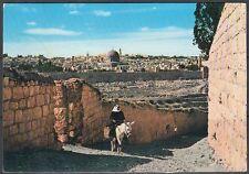 Jordanien Jordan used Post Card Postkarte Landschaft landscapeJerusalem [cm601]
