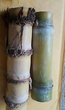 2 Sugar cane sticks for planting
