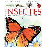 Émilie Beaumont et Lindsey Selley - Les Insectes : Pour les faire connaître aux