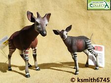 CollectA OKAPI & CALF solid plastic toy wild zoo animal baby NEW 💥