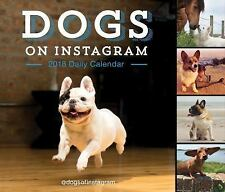 Dogs on Instagram 2018 Daily Calendar (Calendar)