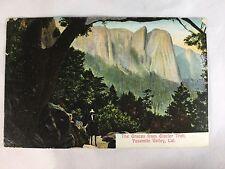 Yosemite National Park Glacier Trail Horseback postcard postmarked 1914