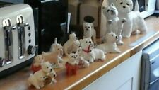 West Highland Terrier Dog Collection in Excellent Condition