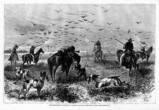 Hunting Prairie-Chicken In Kansas On Horseback Dogs Pointers Hunting In 1867