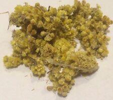 1 oz. Helichrysum Flowers (Helichrysum arenarium) Organic & Kosher Albania