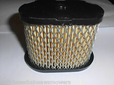 Replacement  Briggs & Stratton INTEK  Air Filter to fit Hayter Lawnmowers