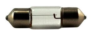Trunk or Cargo Area Light-Standard Lamp - Rear Eiko 3022
