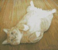 Cross Stitch Chart - Kit Ginger Cat Tummy Rub