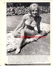 Vintage Chris Noel BUSTY SEXY BIKINI SWIMSUIT '63 PRESS Publicity Portrait