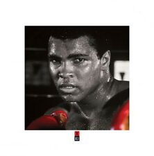 BOXING POSTER Muhammad Ali Gloves
