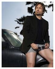 """CALIFORNICATION""  David Duchovny- Glossy 8x10 Photo"