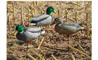 Greenhead Gear Full Body Mallard Active Pack Duck Decoys Avery Flocked Head Drk