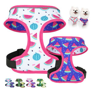 Printed Dog Harness for Medium Dogs no pull Reversible Pet Cat Puppy Vest Collar