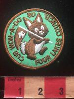 Vtg 1980 CUB WON-A-GO FOUR LAKES COUNCIL Boy Scout BSA Patch 84V9