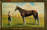Apollinaris Horse Letrero de Metal 3D en Relieve Arqueado Cartel Lata 20 X 30CM