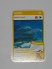 Woolworths Aussie Animals Baby Card -36 Dugong
