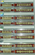 Dental Artificial Acrylic Teeth 1 FULL SET ACRY ROCK Ruthinium SIZE- 42