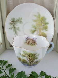 Shelley BLUEBELL WOOD Cup and Saucer Hard to Find