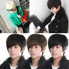 New Korean Men's Handsome Short Straight Hair Full Wigs Cosplay Party 4 Colors